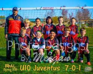 Ayala Team Web 2